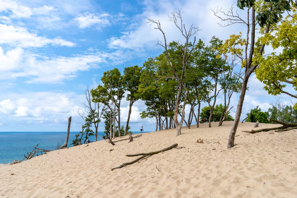 Warren Dunes State Park: 12032 Red Arrow Hwy, Sawyer, MI