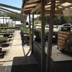 Photo Of B Greenhouses Lincoln Ne United States Checking Out