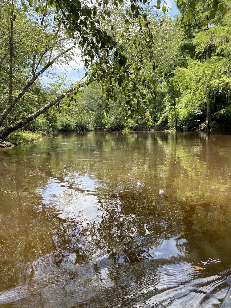 Ohoopee River Campground: 1449 John Trull Cir, Lyons, GA