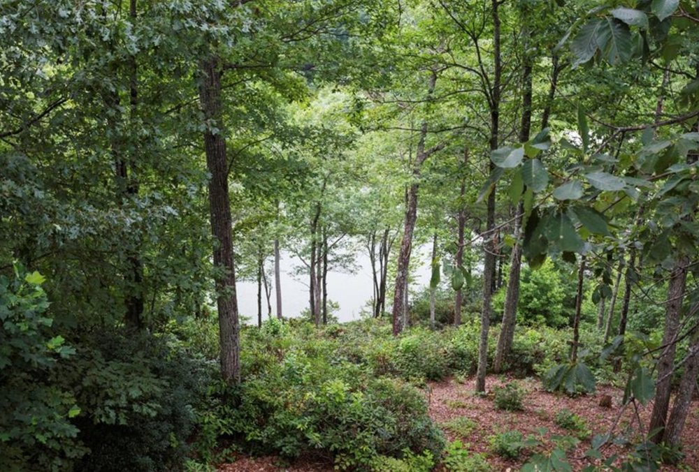Elestial Spirit Healing: Asheville, NC