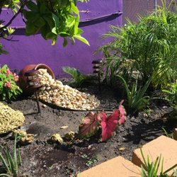 Photo Of A D Landscaping Fort Lauderdale Fl United States Stopped In For