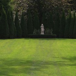 Photo Of Natural Way Lawn Tree Service Lake Orion Mi United States