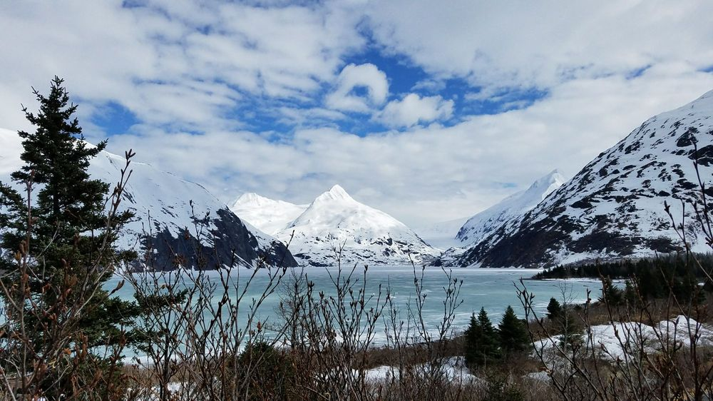 Alaska's Finest Tours & Cruises