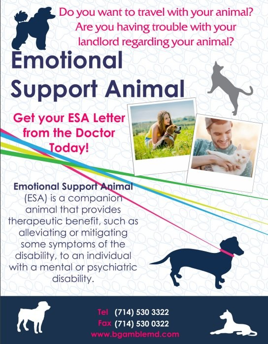 how to ask for emotional support