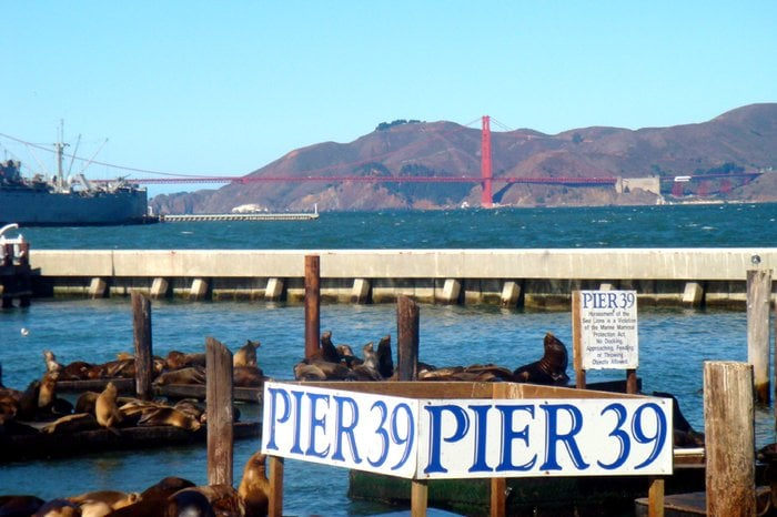 Pier 39: The Embarcadero And Beach St, San Francisco, CA
