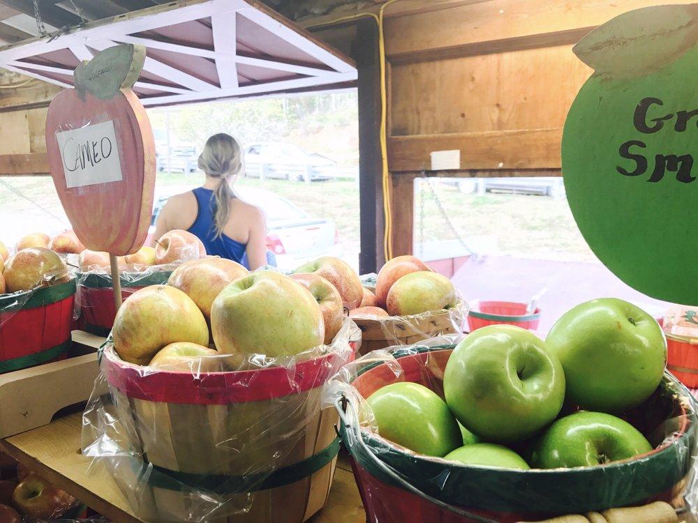 Red Apple Barn: 3379 Tailscreek Rd, Ellijay, GA