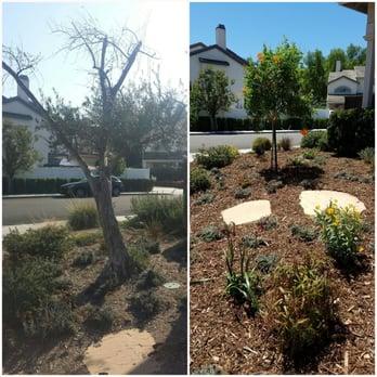 Greener Gardens 46 Photos 62 Reviews Landscaping 7451 Warner Ave Huntington Beach Ca