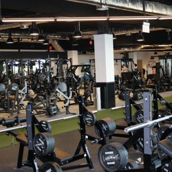 Powerhouse gym fort lauderdale photos reviews gyms