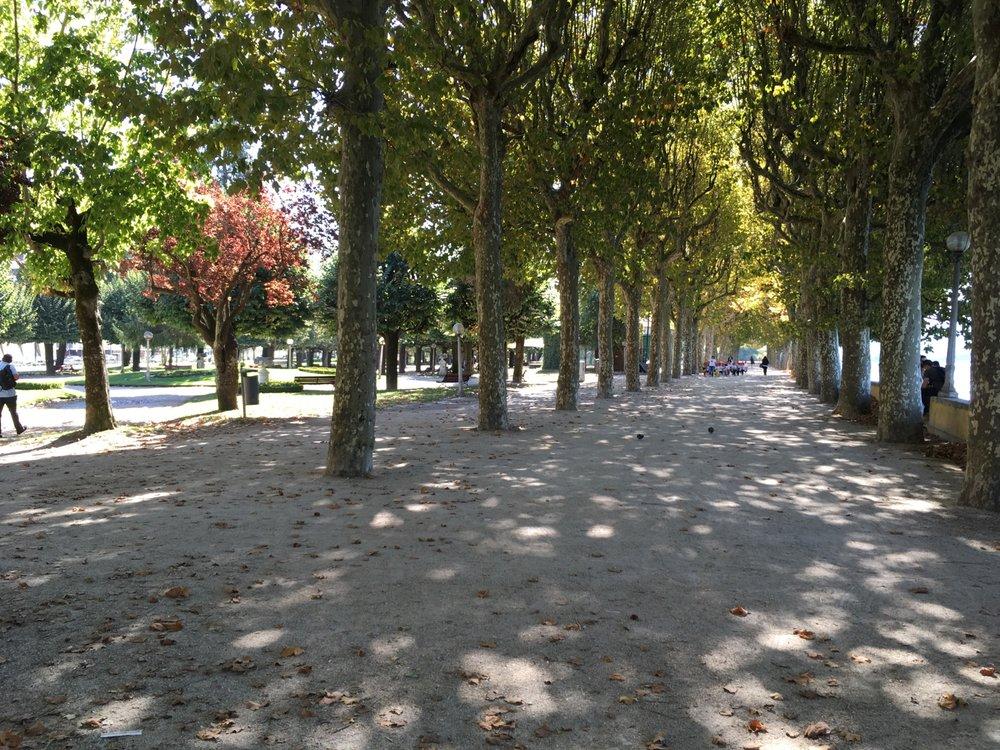 Parque Dr. Manuel Braga