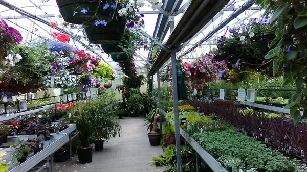 Platt Hill Nursery 222 W Lake St Bloomingdale Il Garden Centers Mapquest