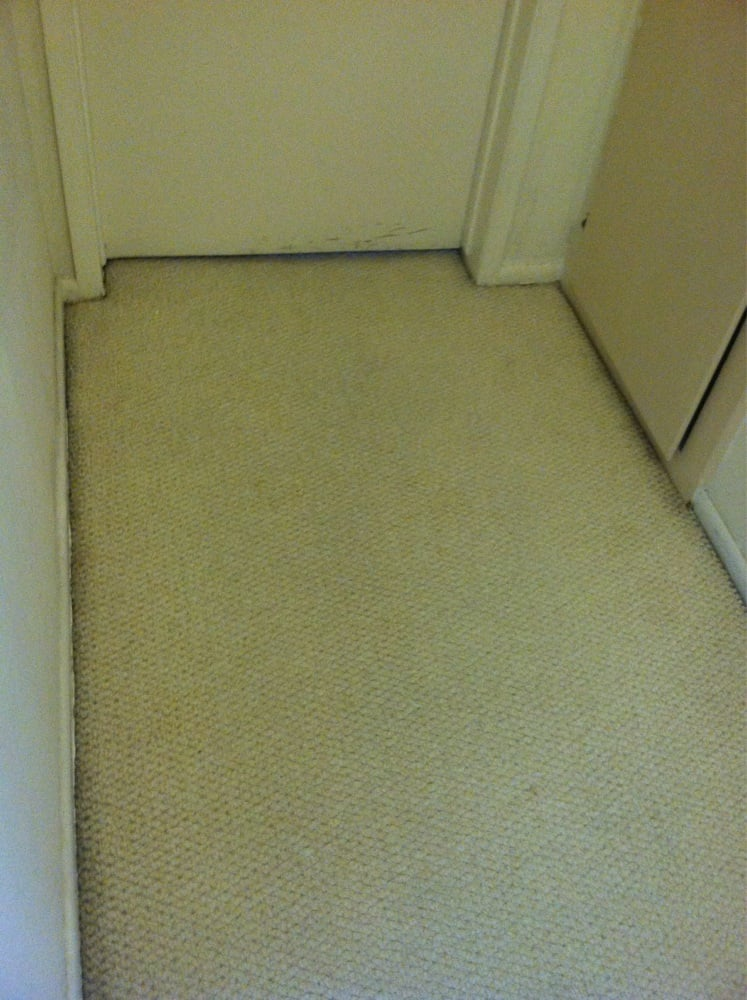 Prestigious Carpet Cleaning 13 Photos 28 Reviews