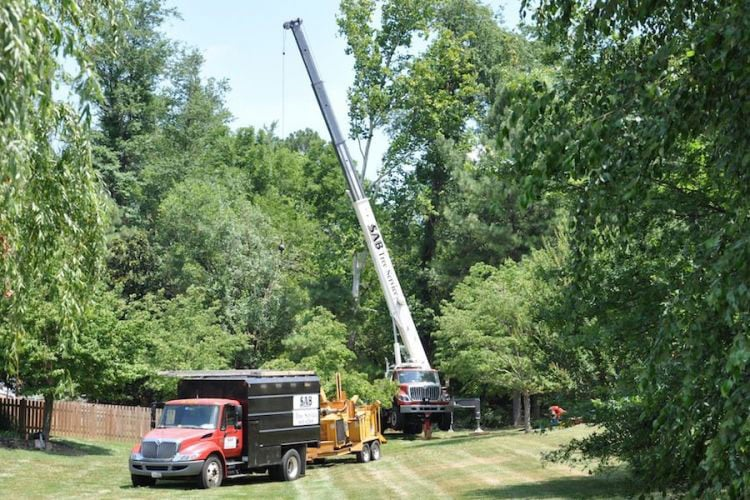 SAB Lawn Landscaping & Tree Service: 43787 Beaver Meadow Rd, Sterling, VA