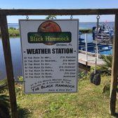photo of black hammock adventures   oviedo fl united states  lol black hammock adventures   109 photos  u0026 37 reviews   boating      rh   yelp