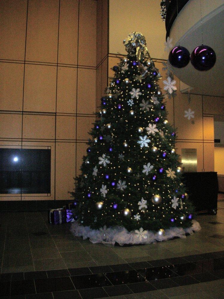 Portland Christmas Tree.Christmas Tree In Franz Hall Yelp