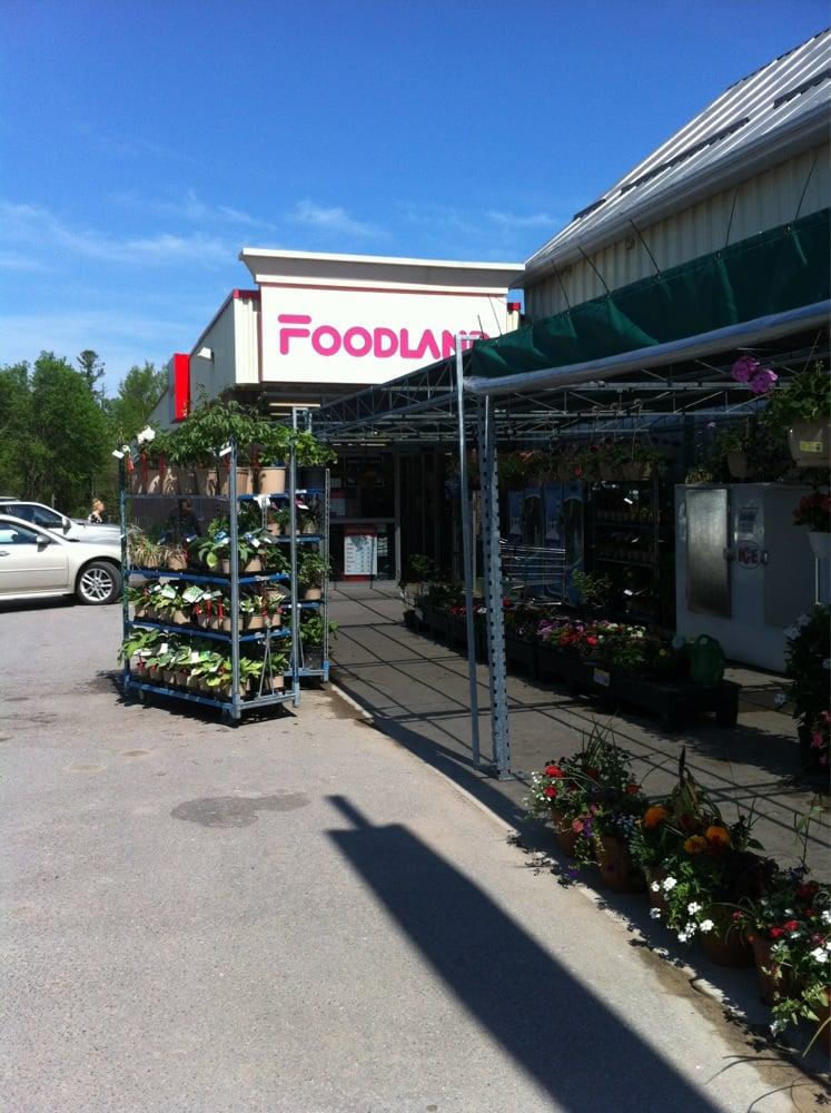 Sayers Foodland