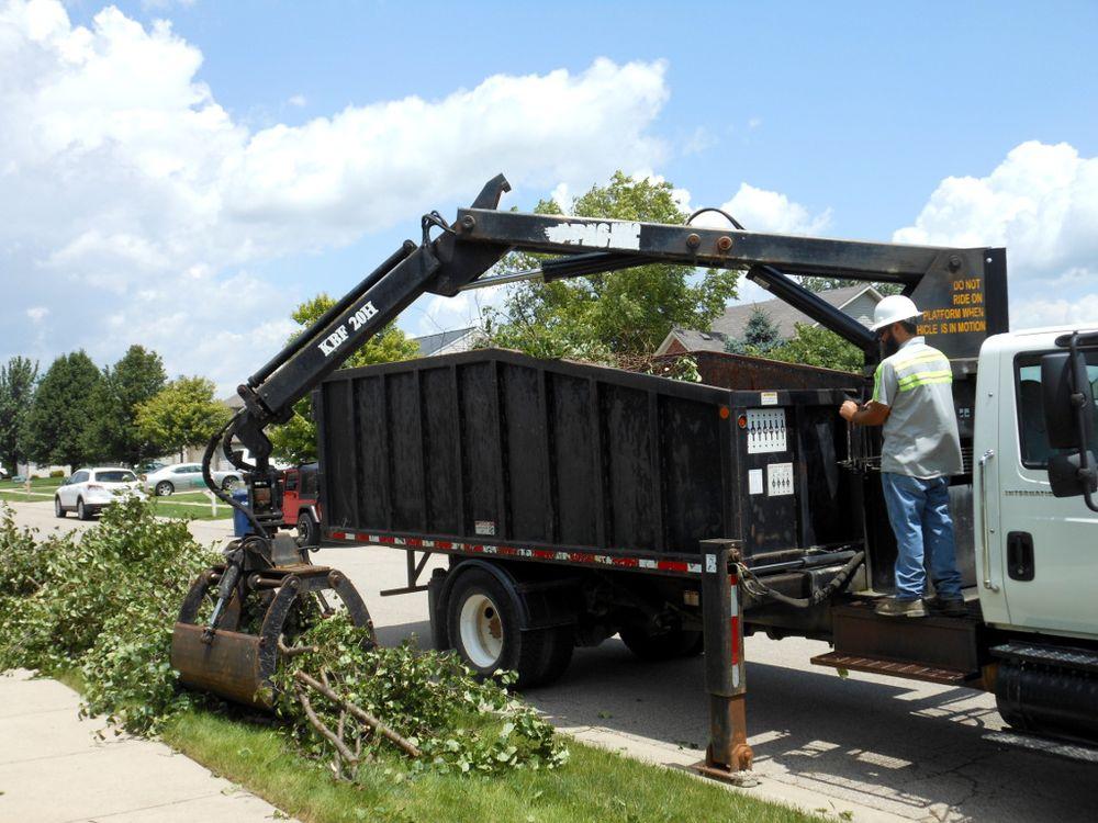 Florida Green Lawn & Tree Service: 6635 Old Rd 37, Lakeland, FL