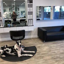 Shear attitude hair salon 58 photos 19 reviews hair for A new attitude salon