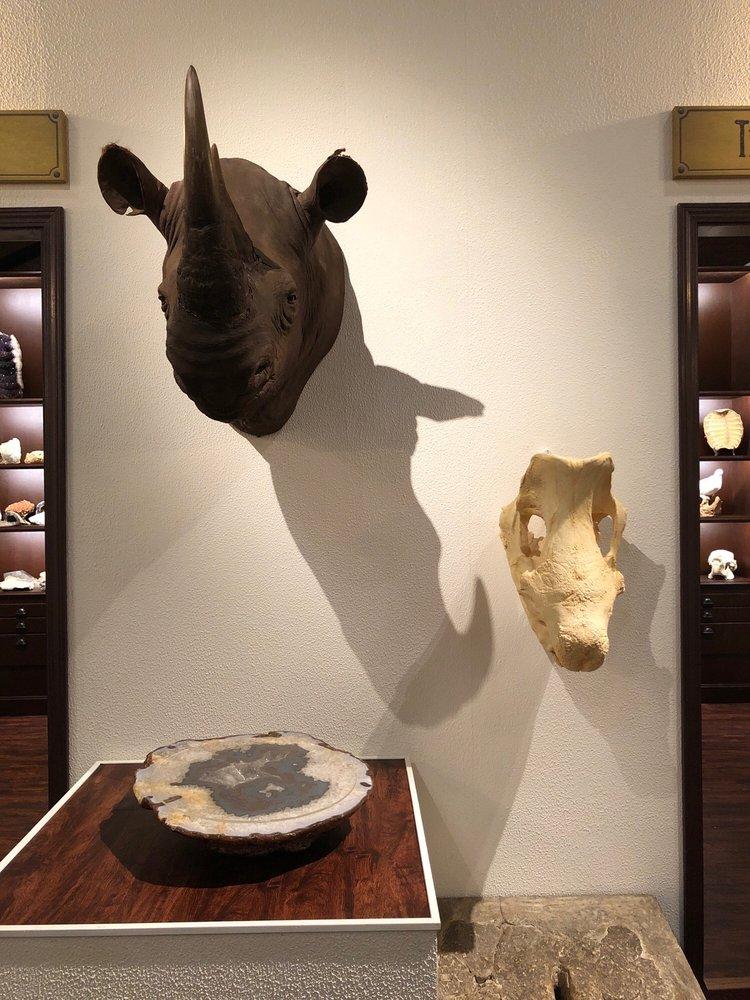Houston Museum of Natural Science - Sugar Land: 13016 University Blvd, Sugar Land, TX