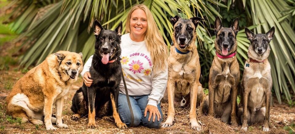 Dog Training Palm City Fl