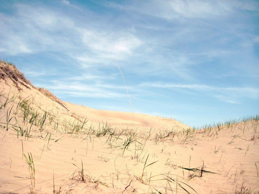 Juniper Dunes Wilderness: Kahlotus Hwy, Pasco, WA