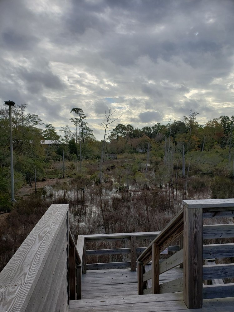 Pascagoula River Audubon Center: 5107 Arthur St, Moss Point, MS