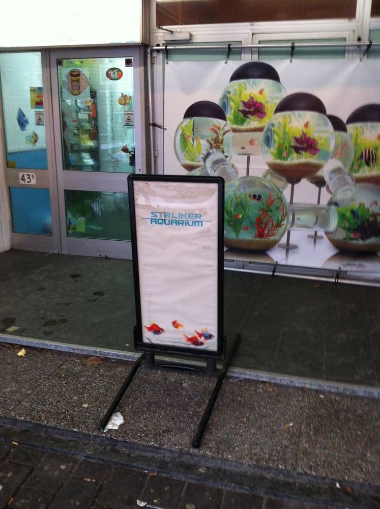Strijker Aquarium   Dierenwinkels   Beijerlandselaan 43 B, Rotterdam, Zuid Holland