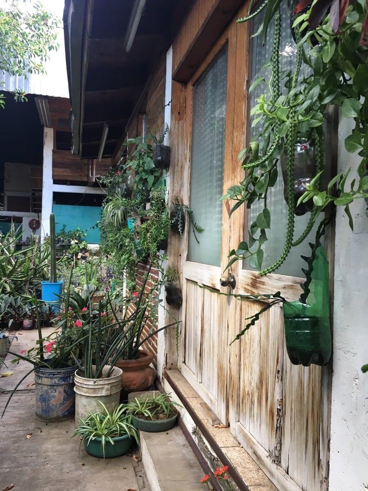 Composta org nica viveros y jardiner a curtidurias 330 for Viveros en oaxaca