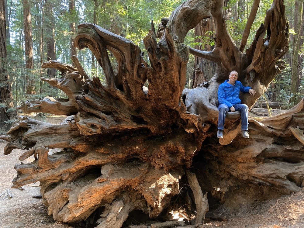 Hendy Woods State Park: 18599 Philo-Greenwood Rd, Philo, CA
