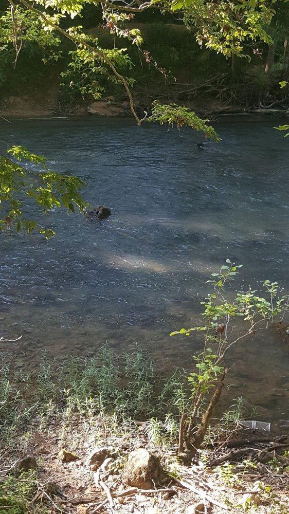 Castor River Hideaway: 304 Green St, Zalma, MO