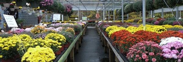 Jim Jenkins Lawn Garden Center 1877 Painters Run Rd Upper Saint Clair Pa General Merchandise Retail Mapquest