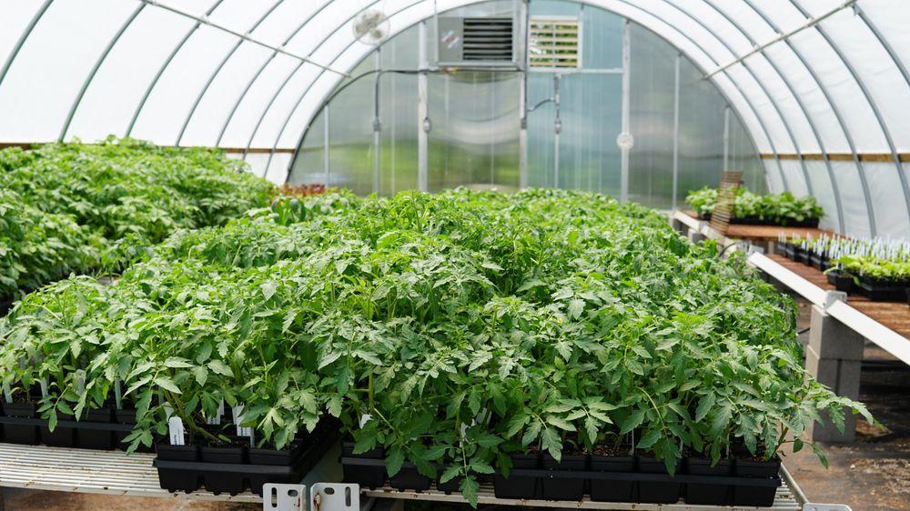 Nitron Industries - Nurseries & Gardening - 5703 S Hewitt St ...
