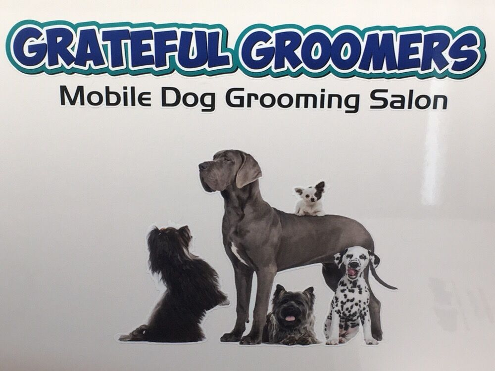 Grateful Groomers: Boulder, CO