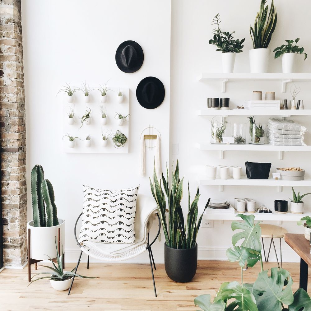 Gather Home + Lifestyle: 2321 W North Ave, Chicago, IL