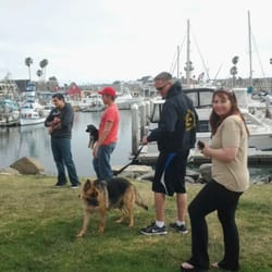 Master Sherris Dog Training 16 Photos Pet Training Oceanside
