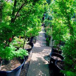 Waltonu0027s Lawn U0026 Garden Center   74 Photos U0026 17 Reviews ...