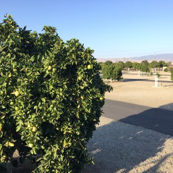 Photo Of Orange Grove RV Park