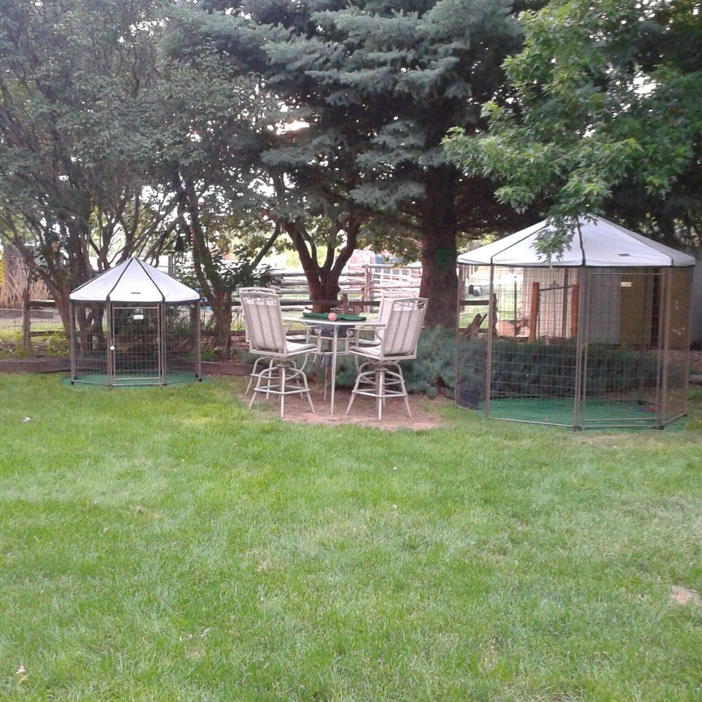 Peace of Mind Dog Boarding & Pet Sitting: Montrose, CO