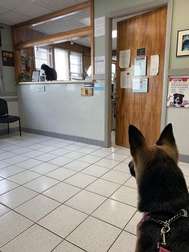 Malden Animal Hospital & Kennel: 231 Salem St, Malden, MA