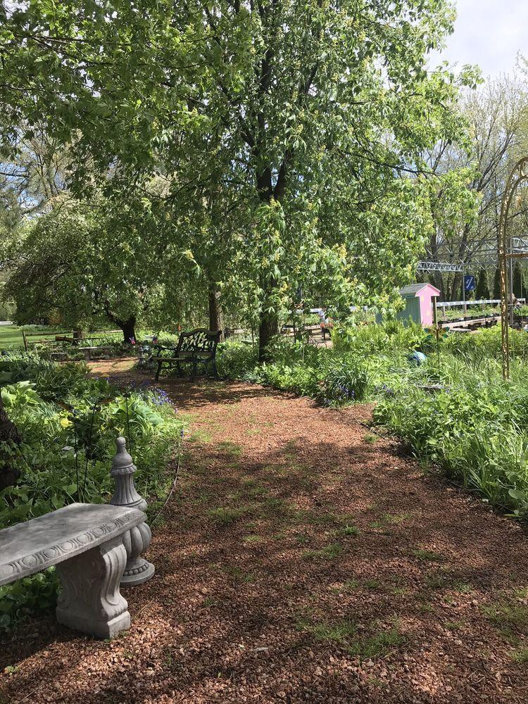 Shady Acres Perennial Nursery
