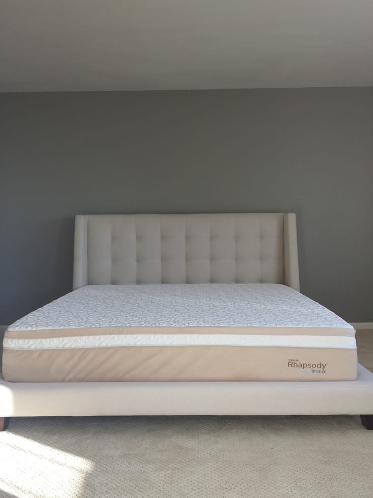 Bed Shoo Review 28 Images Kim Bed Decofurn Factory Shop Case Study Fastback Bed Review