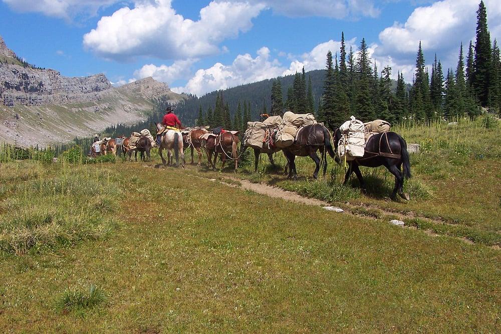 A lazy h outfitters horseback riding choteau mt for Where can i go horseback riding near me