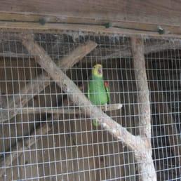 Photos for Zoosiana Zoo Of Acadiana Yelp