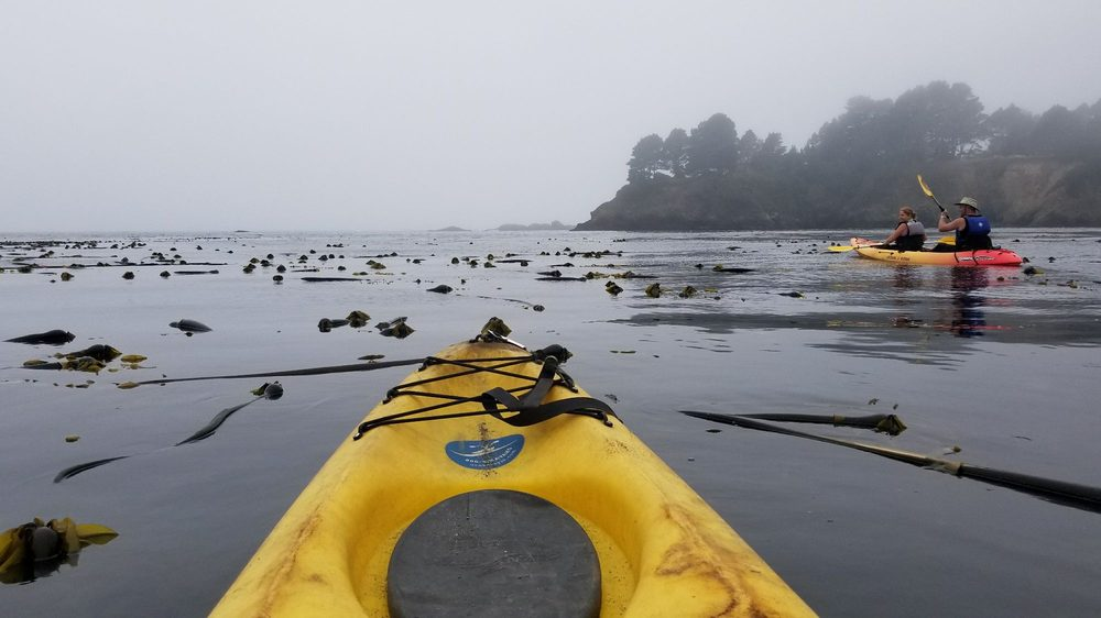 Kayak Mendocino: Van Damme State Park, Little River, CA