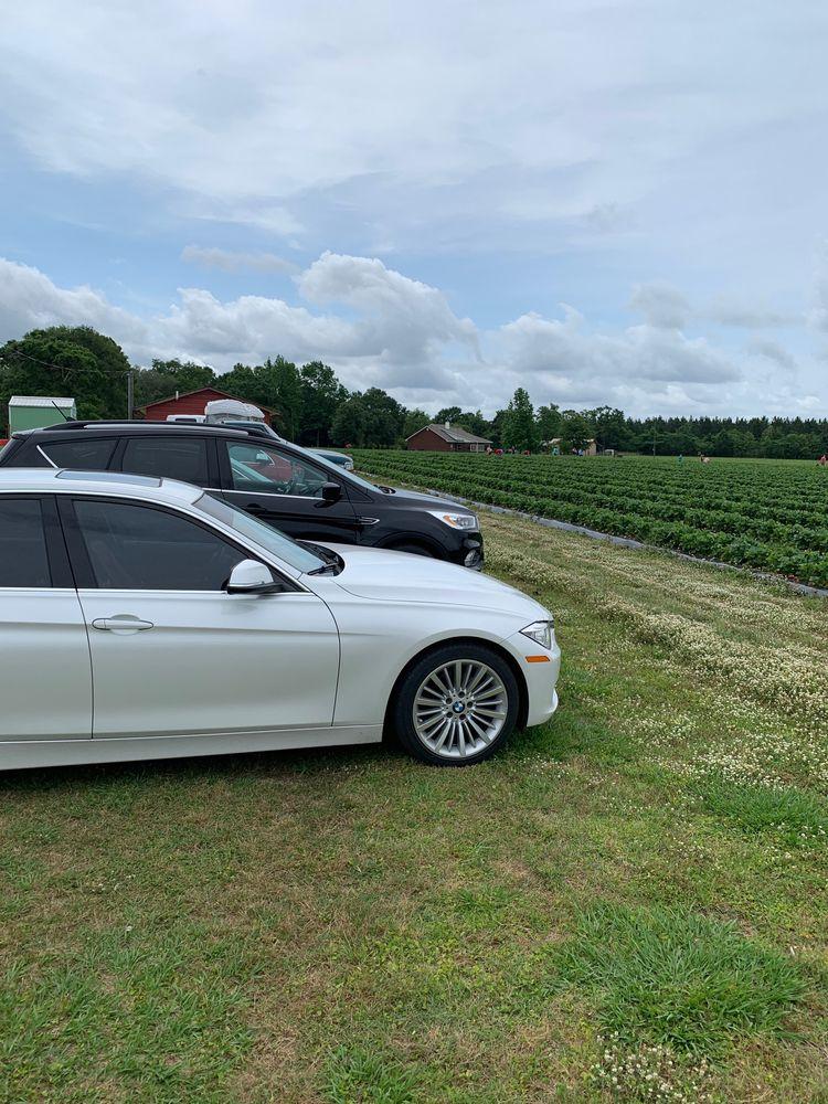 The Strawberry Farm: 8687 Evers Rd, Milton, FL