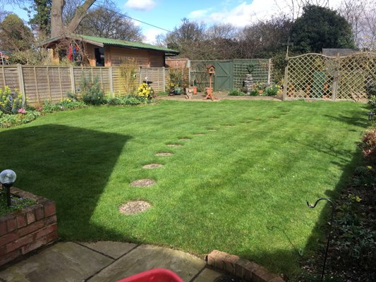 Yelp Reviews For Green Man Lawn Care New Gardeners 25