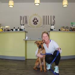 Dog Hotel Agoura Hills Ca