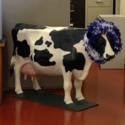 Maytag Dairy Farms 12 Reviews Cheese Shops 2282 E 8th St N