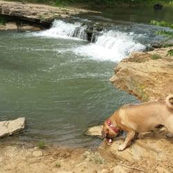 Mutt Run Off Leash Dog Park Lawrence Ks