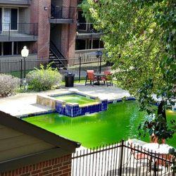 sierra park apartments apartments 11611 ferguson rd dallas tx