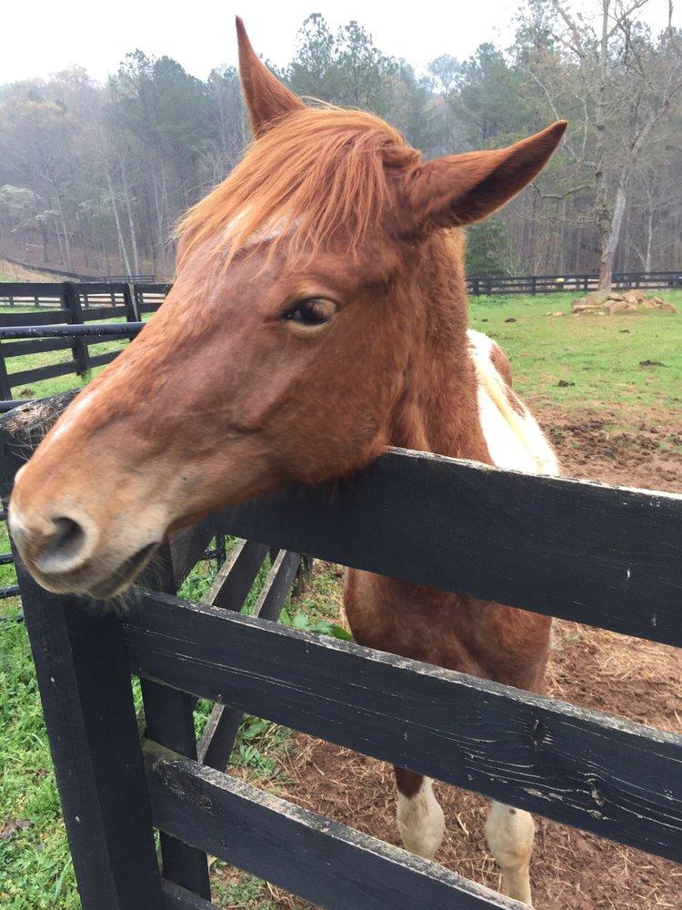 Serenbe Farms: 8715 Atlanta Newnan Rd, Chattahoochee Hills, GA